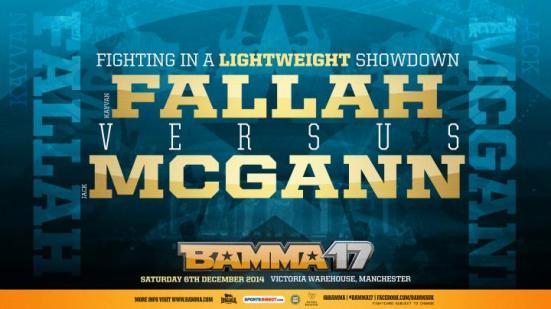 B17_Web_Fallah vs McGann